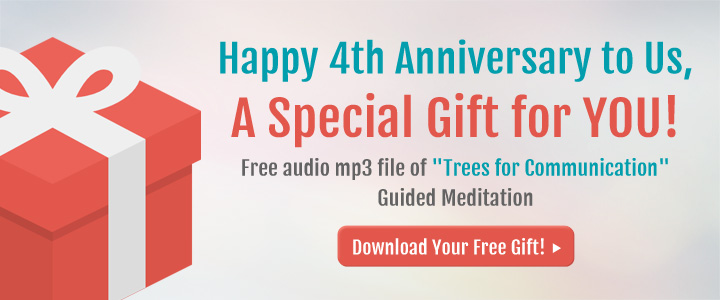 Happy 4th Anniversary Free Mp3 Gift