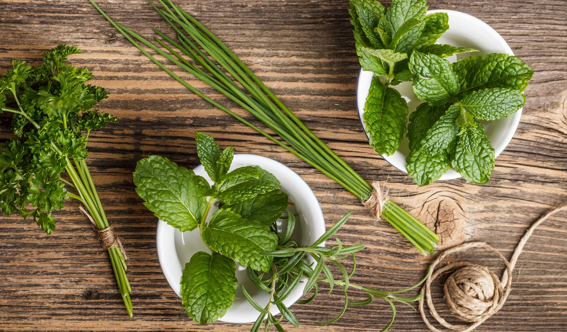 6 Must Have Summer Herbs
