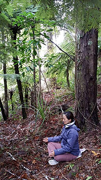 Ilchi Lee New Zealand Meditation Tour