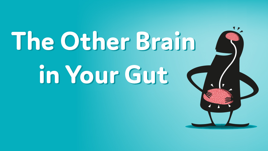 The Other Brain in Your Gut