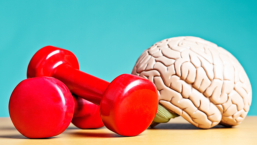 How Exercise Affects Your Brain