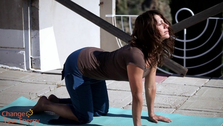 A Beginner's Guide to Yoga Poses - Find Emotional Bal...