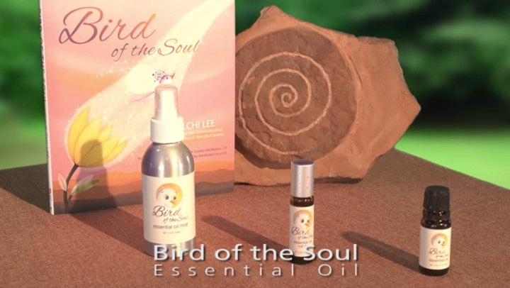 Tips and Tools - Trends: The Bird of the Soul Essenti...