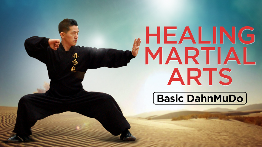 Healing Martial Arts: Basic DahnMuDo