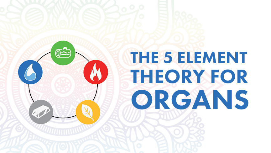 The 5 Element Theory For Organs