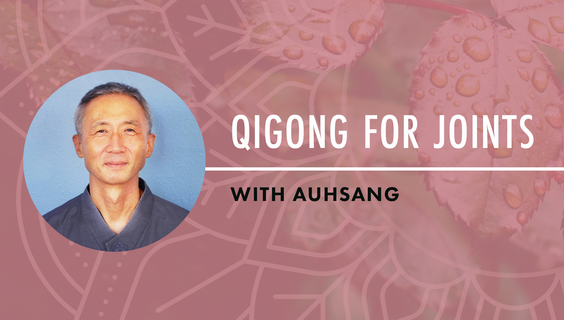 Qigong for Joints