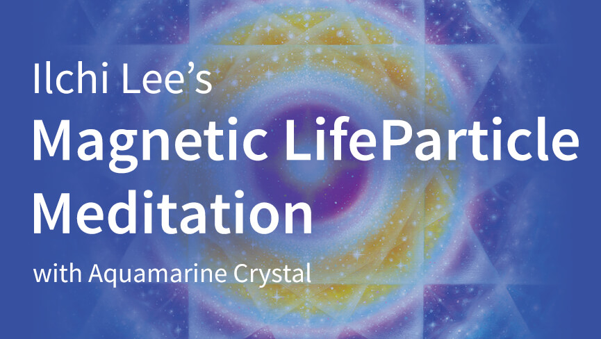 Magnetic LifeParticle Meditation
