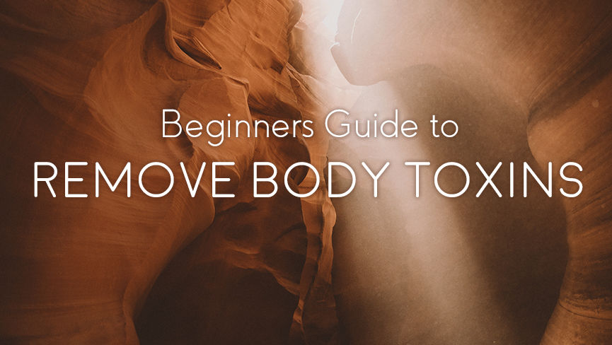 Beginners Guide to Remove Body Toxins