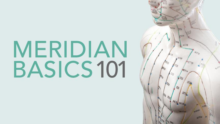 Meridian Basics 101