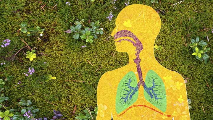 Tackle Allergy Season Naturally