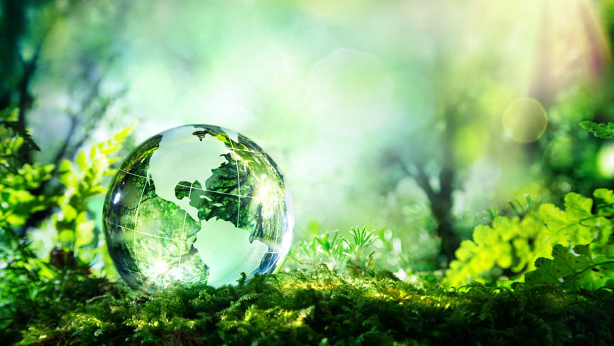 How a Sustainable Lifestyle will Save the Planet Humanity