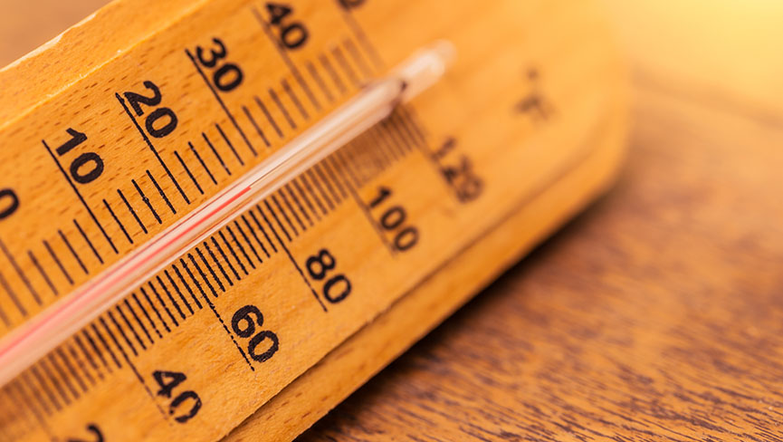 Body Temperature and the Secret of 1 Degree