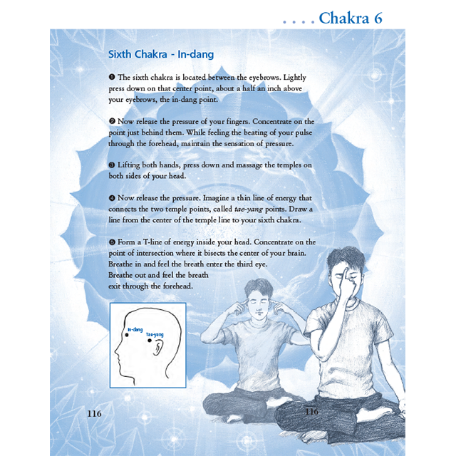 Healing Chakras with Guided Meditation CD