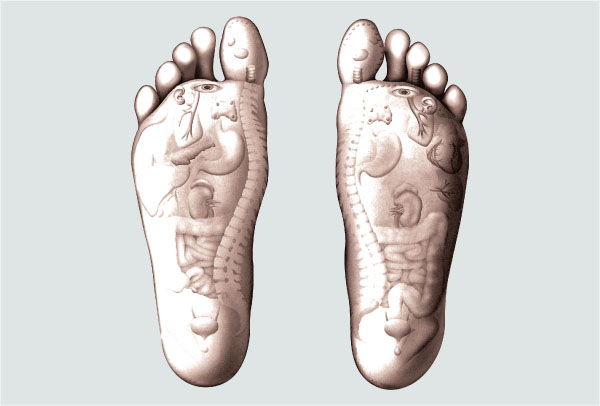 Feet meridians