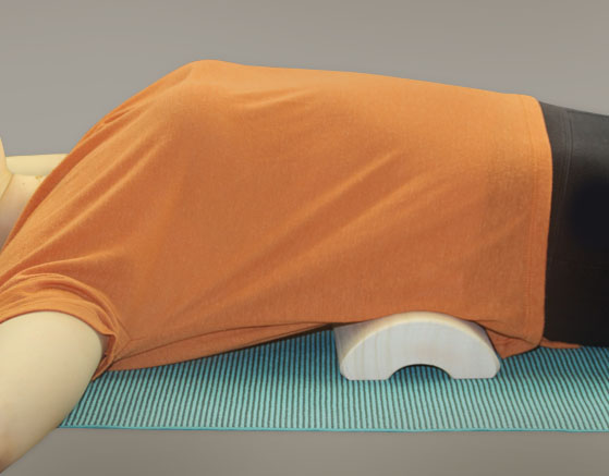 Lower Back Bolster