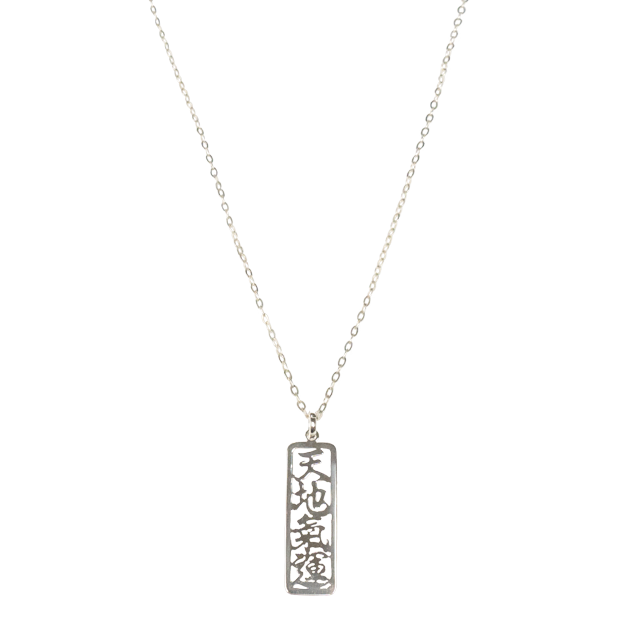 Universal Life Energy Sterling Silver Necklace 26 chain