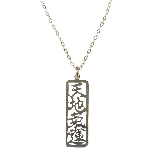 Universal Life Energy Sterling Silver Necklace 22 chain