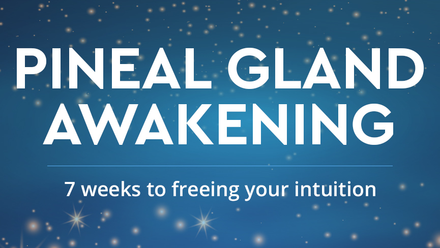 Introducing the Pineal Gland Awakening Workshop